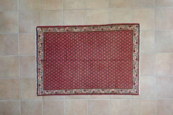 Saraband Persia 11267-147x100