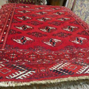 Turcomanno Persia 12214-160x110