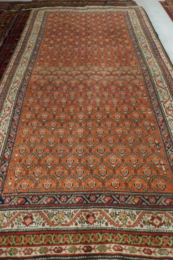 elegante tappeto color salmone chiaro