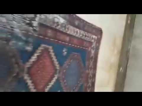 Video Lavaggio Tappeti Persiani e Orientali Torino, Rivoli
